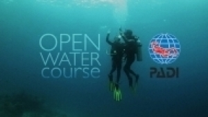 Ultimate Open Water Diver